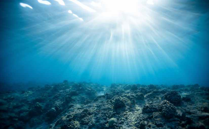 Restoring Coral Reefs for FloodProtection